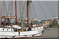 TQ4379 : 'Loth Lorien at the 2017 Tall Ships Regatta by Stephen McKay