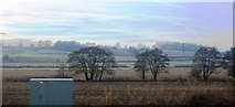 SJ8234 : South of Dove Farm by N Chadwick