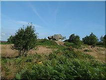 SE2064 : Brimham Rocks by Malcolm Neal