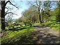 SO4808 : Road approaching Craig-y-porth Farm by Philip Halling