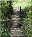 ST3093 : Steps down to a kissing gate below Llanfrechfa Way, Cwmbran by Jaggery