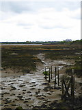 TQ8068 : The Medway estuary near Sharp's Green by pam fray