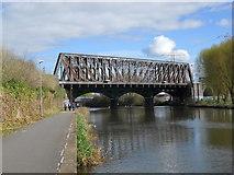 TL1998 : Railway bridge over the River Nene, Peterborough by Paul Bryan