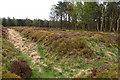 SE7889 : Ditch, Cawthorne Roman Camp by Mick Garratt