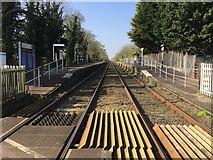 SK6443 : Burton Joyce railway station by Andrew Abbott