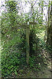 TM3569 : Footpath sign on Lovers Lane Footpath by Geographer