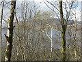NN0567 : Loch Linnhe through the trees by M J Richardson