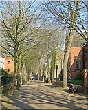 SK5803 : Leicester: an April morning in New Walk by John Sutton