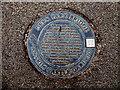 J1486 : Plaque, Deer Park Bridge by Kenneth  Allen