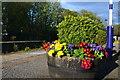 NZ8608 : Flower tub on Sleights station by David Martin