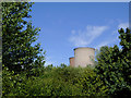 SK0517 : Treetops and cooling towers near Rugeley, Staffordshire by Roger  Kidd