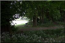 TQ0866 : Bench by the Thames Path by Robert Eva