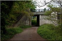 TQ0866 : Thames path underbridge at Desborough Island by Robert Eva
