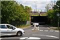 TQ2191 : Railway bridge over Bunn's Lane by Christopher Hilton