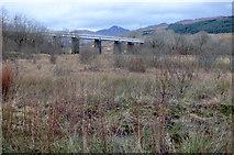 NN3825 : Glenbruar railway viaduct by Thomas Nugent
