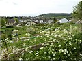 ST7693 : View over allotments in Wotton-under-Edge by Philip Halling