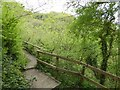 ST3624 : Nature trail in Swell Wood by David Smith