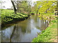 NT5173 : The River Tyne at Haddington by M J Richardson