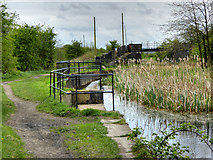 SD7909 : Manchester, Bolton and Bury Canal Drain near Benny's Bridge by David Dixon