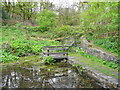 SE1025 : The pond in Cunnery Wood Nature Reserve, Halifax by Humphrey Bolton