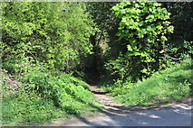 SO2413 : Start of narrow track, Twyn Wenallt by M J Roscoe