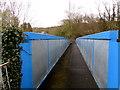 SN8000 : Across a blue and grey railway footbridge, Clyne by Jaggery