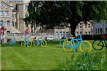 SE4843 : Tour de Yorkshire Decorations, Tadcaster by Chris Heaton