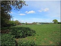 SE7666 : Grass field and Church Farm, Westow by Jonathan Thacker