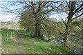 NS3922 : Beneath Mount Scarburgh by Richard Webb