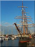 SX4854 : Kaskelot in Sutton Harbour by Stephen McKay