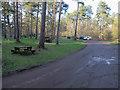 TL8294 : Lynford Arboretum and Lynford Water car park by Hugh Venables