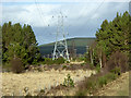 NH9820 : Power Lines at the Edge of the Abernethy Forest by David Dixon
