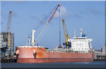J3576 : 'Flag Evi' at Belfast by Rossographer