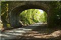 SX5259 : Old railway through Plymbridge Woods by Stephen McKay