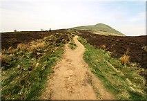 NO2505 : Path to East Lomond by Bill Kasman