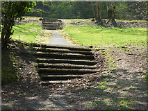 NS3174 : Steps in Birkmyre Park by Thomas Nugent
