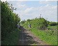 TL4267 : Riders on Cuckoo Lane by John Sutton
