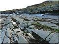 ST1344 : Kilve beach by Chris Gunns