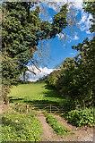 TQ1853 : Gate into field by Ian Capper