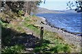 NT2321 : Shore path by St Mary's Loch by Jim Barton