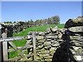 SH8751 : Hiraethog Trail by Eirian Evans