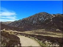 NN9462 : The Ben Vrackie path by Gordon Brown
