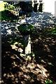 NY4348 : Sundial at Wreay by Tiger