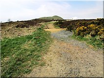 NO2505 : Path from Purin Hill car park by Bill Kasman