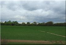 TM1440 : Footpath over field towards Thorington Hall by JThomas