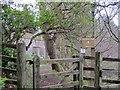 NT1452 : Gate to Catwalk Den Wood by Jim Barton