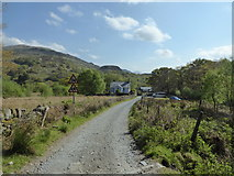 SH5848 : Track near Beddgelert by Jeremy Bolwell