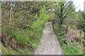 ST2090 : Track/Byway near Pant-y-cyfrwy by M J Roscoe