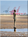 SJ3098 : Another Place, Iron Man and Seaforth Cranes by David Dixon