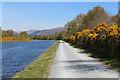 NN1581 : Great Glen Way near Glen Loy by Chris Heaton